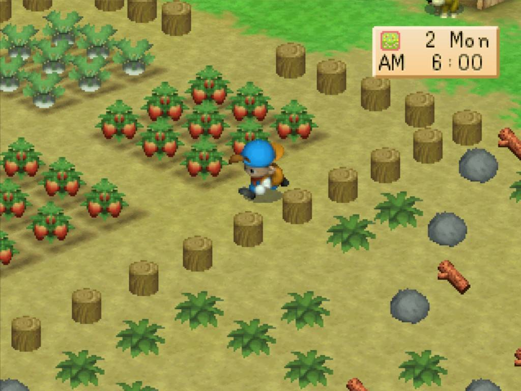 Game Harvest Moon Back To Nature For Pc