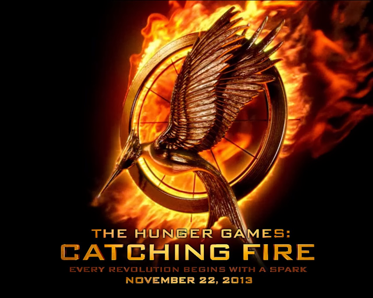 Catching fire essay