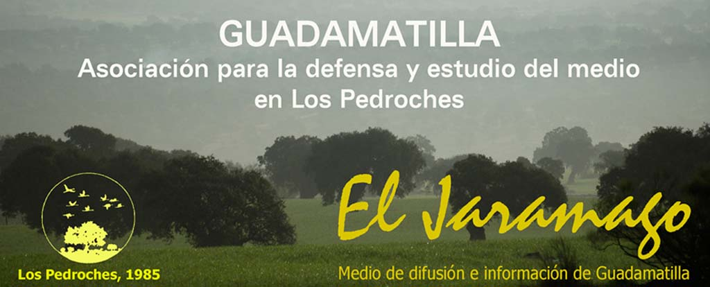 Guadamatilla