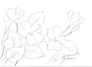 ramo de hibiscos para pintar