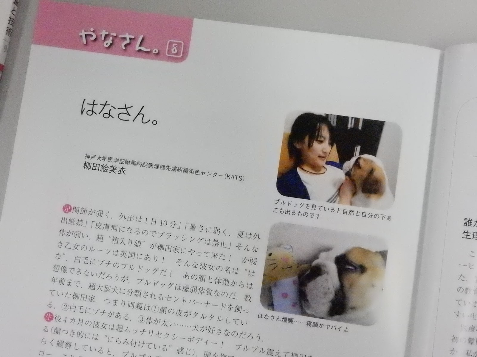 柳田 絵美 衣 大学院