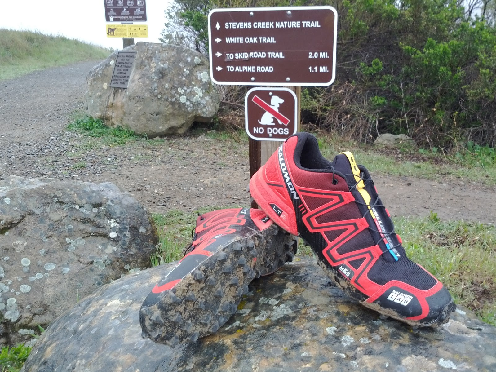Richard Bolt Runs Drizzle Drazzle Rainy Muddy 15 Mile