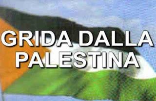 http://www.cinemacorto.blogspot.it/2015/08/grida-dalla-palestina-il-genocidio-di.html