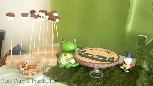 Smores Pops, Acorn Cookies, Woodland Party Desserts