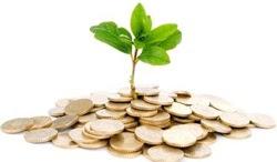 Mi Economía 10