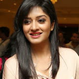 Vimala Raman Latest Photos in Jeans at Trendz Life Style Expo 2014 Inauguration 0021