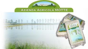 Azienda Agricola Motte : Produttori riso