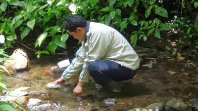 sungai batu ferringhi,bakteria e-coli, gambar sungai ferringhi, cara hapuskan e-coli