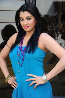 Siddi in a lovely Blue sleeveless gown Pictures Love Chesthe Press Meet