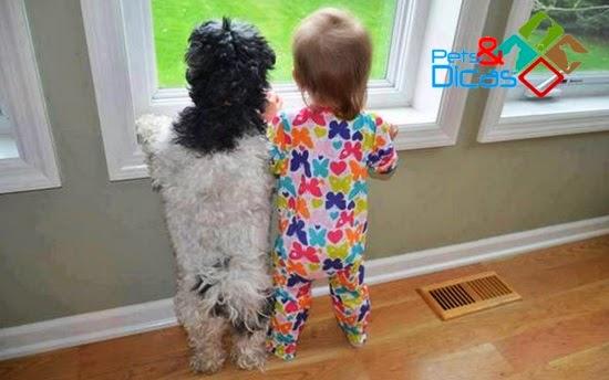 Fotos que comprovam que crianças precisam de animais de estimação