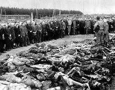 Rwanda Genocide essays