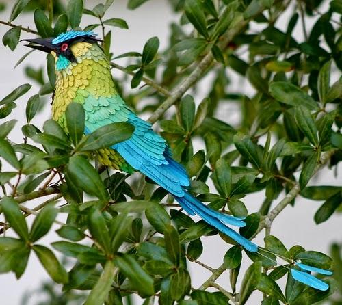 04-Blue-Crowned-Motmot-Paper-Bird-Sculptures-Colombian-Artist-Diana-Beltran-Herrera-www-designstack-co