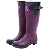 Sherwood Forest Melbury Horse Print Women's Wellington boots