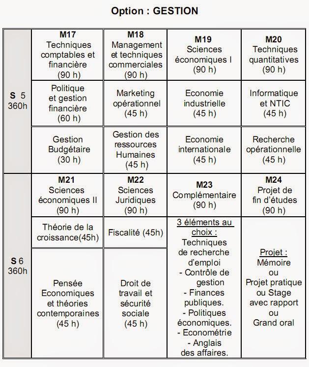 تعريف شعبة الإقتصاد و مسالكها
