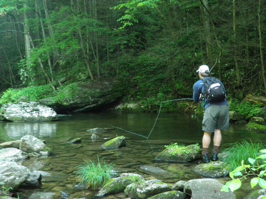 Brown mountain lodge and creekside cozy cabin rentals nc for Fishing lessons near me