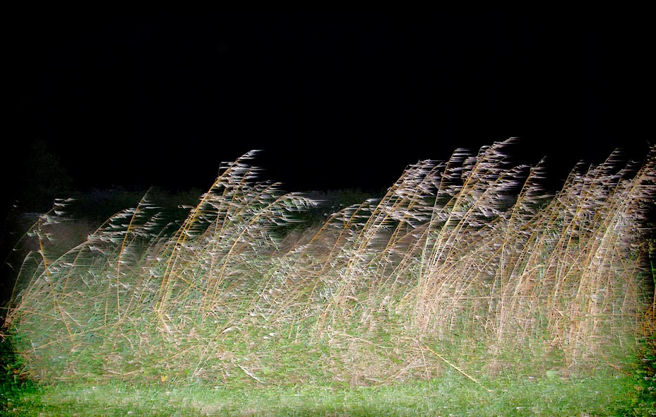 far country-night-field