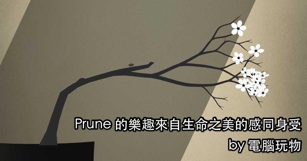 那是生命之美的感同身受: Prune 打心底珍藏的遊戲