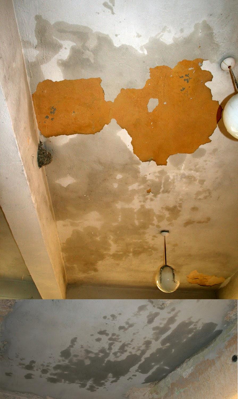 Ceilings quite wet