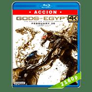 Dioses de Egipto (2016) HEVC H265 2160p Audio Dual Latino-Ingles