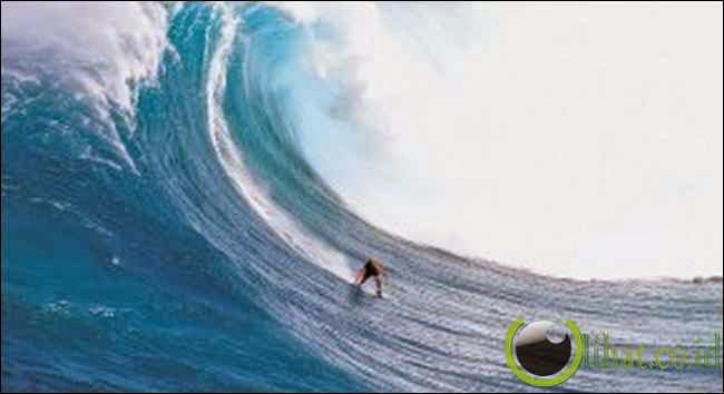Big Wave Surfing (Surfing Ombak Besar)