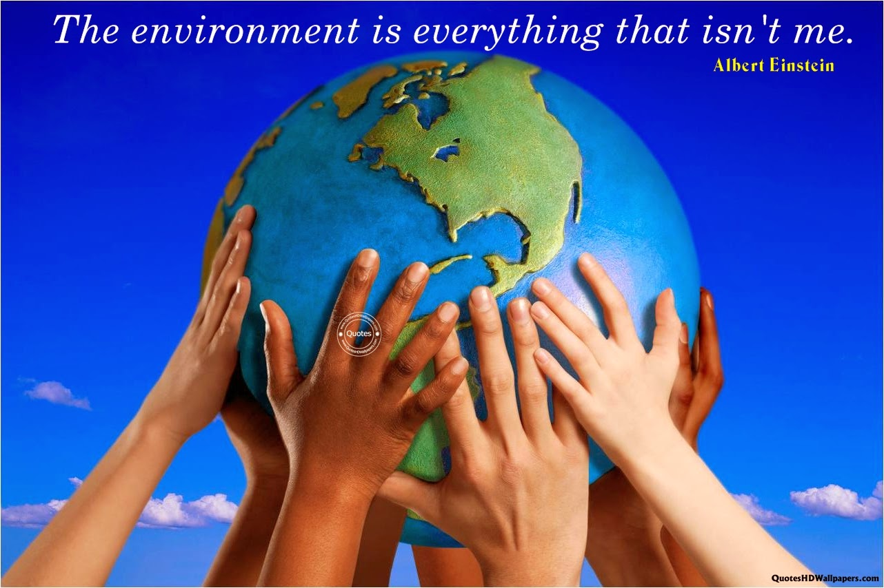Albert Einstein Environmental Quotes Image