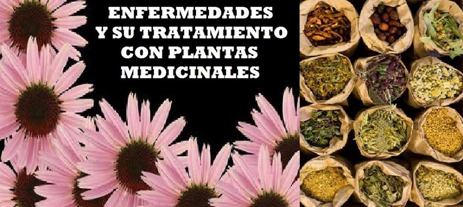 ENFERMEDADES Y SU TRATAMIENTO CON PLANTAS