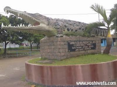 Wisata Taman Buaya Indonesia Jaya, Bekasi