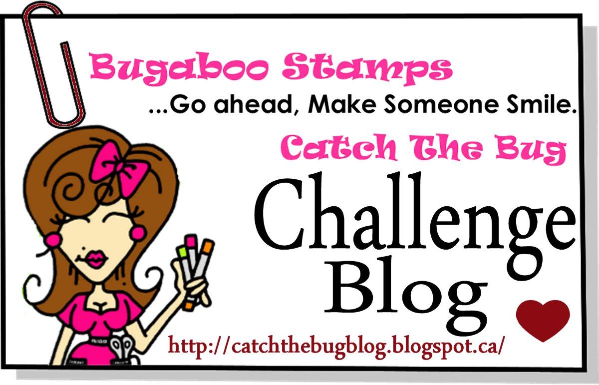 Challenge blog Catch The Bug