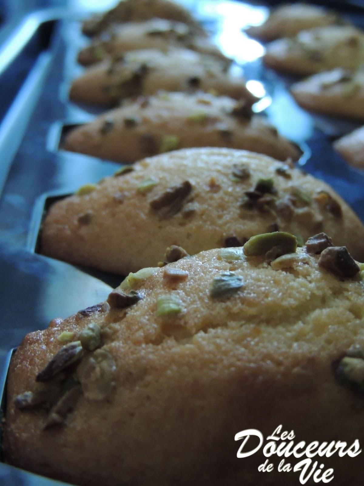 Madeleines au lait r gilait blogs de cuisine for Regilait cuisine