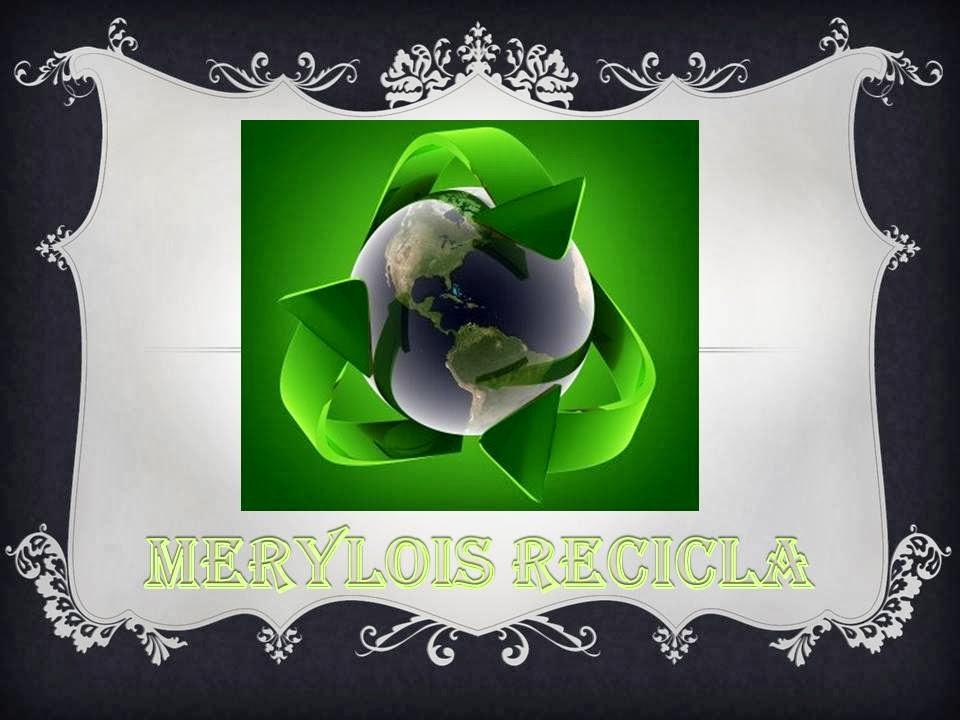 MERYLOIS RECICLA