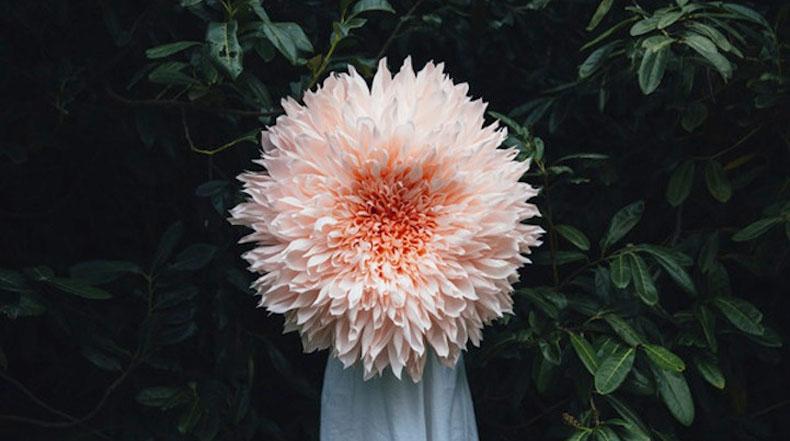 Gigantes flores de papel por Tiffanie Turner