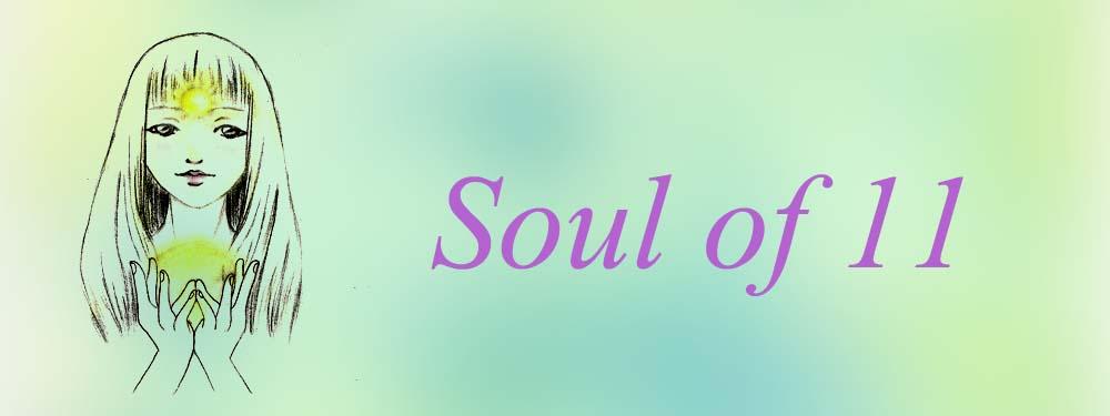 Soul Of 11