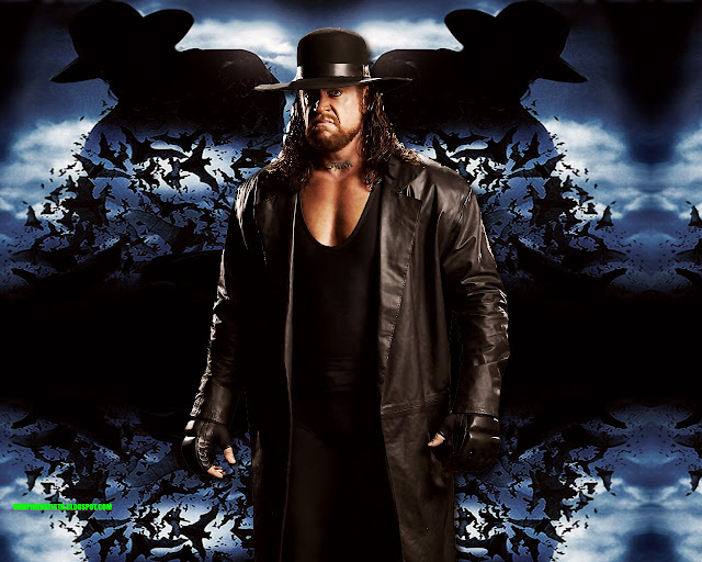 undertaker wwe superstar hd wallpaper undertaker wwe superstar hd    Undertaker Wwe Superstar