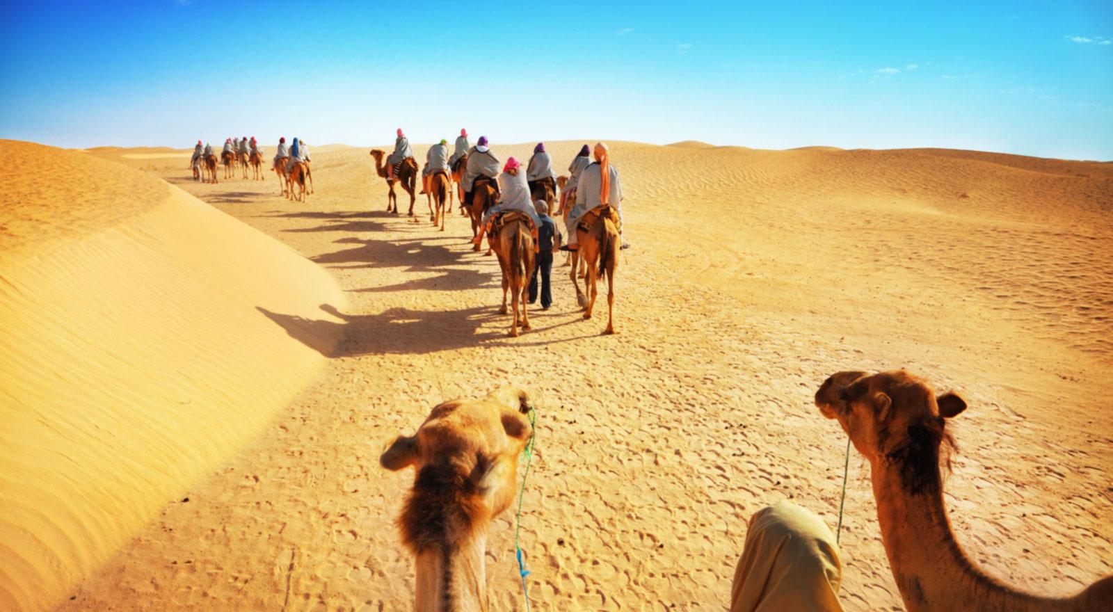 A Verdade Sobre O Caminho De Volta Para Cana 227 O Pregador Fiel