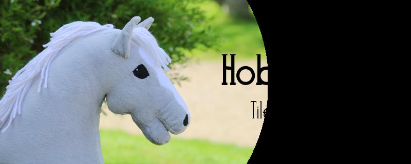 Chiaro Hobbyhorses