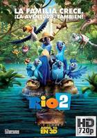Rio 2 (2014) BRrip 720p Latino-Ingles