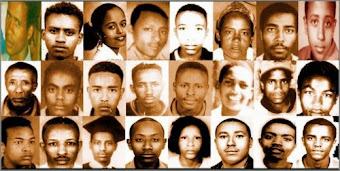 victims 2005