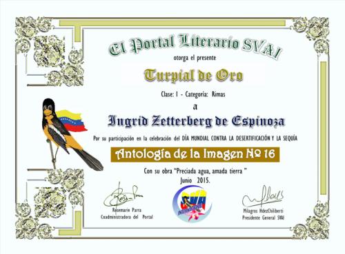 Primer puesto en Sociedad venezolana de artistas internacionales