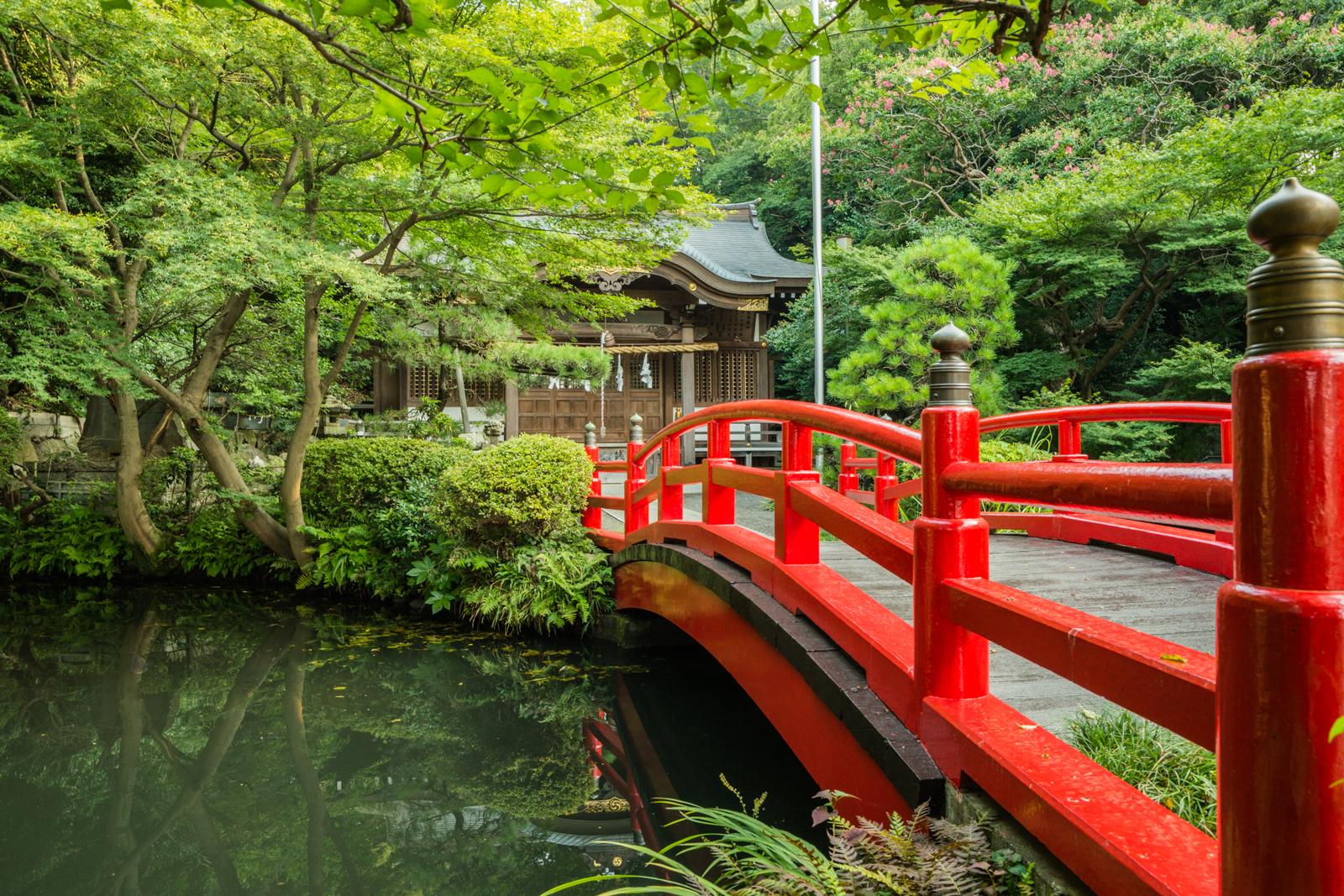 湧水流れる貫井神社の写真