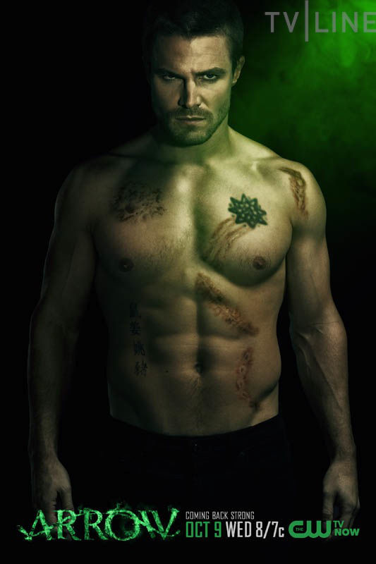 Stephen Amell (Green Arrow / Oliver Queen)