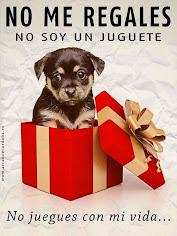 No compres mascotas para regalar. Si quieres regalar amor, adopta una mascota sin hogar.