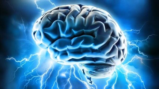neurosains
