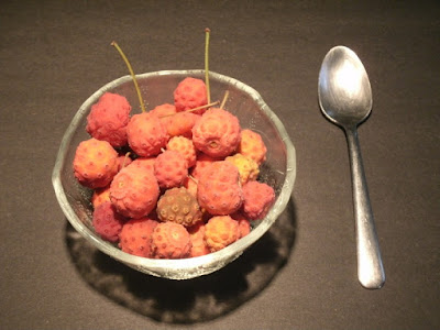 Ripe cornus kousa chinese dogwood fruit in a bowl with spoon by garden muses: a Toronto gardening blog