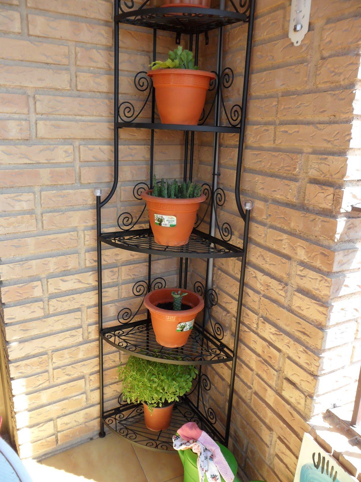 Pasi n por las plantas estanter a para cactus nueva - Estanteria para plantas ...