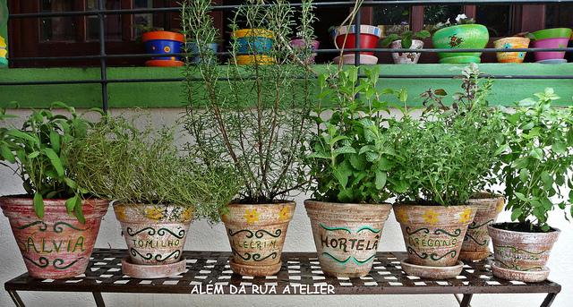 horta e jardim livro:Aprender a comer bem: Horta em casa!!