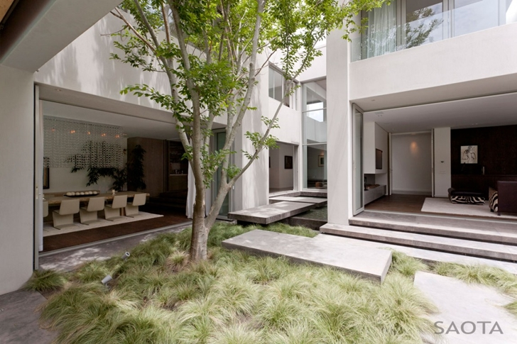 Vegetation in the backyard of Contemporary Villa by SAOTA