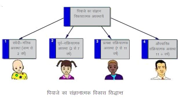 Piaget thoery Hindi, CDP Notes Hindi, CTET Exam Notes, HTET Notes, बाल विकास एवं शिक्षाशास्त्र, पियाजे का संज्ञानात्मक विकास सिद्धांत