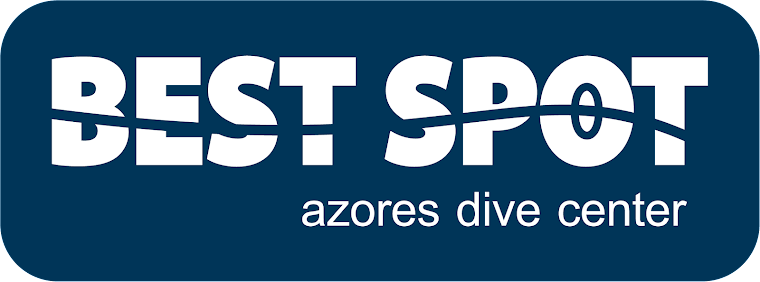 Best Spot Azores PADI 5* Dive Center