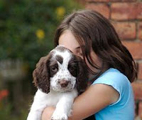 5 Tips In Deciding to Get a Puppy for Your Child