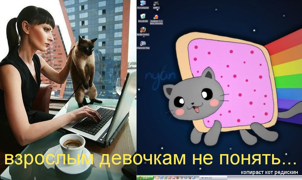 Nyan Cat - взрослым девочкам не понять